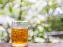 Ice lemon tea on wood table with nature green blur bokeh background royalty free stock image