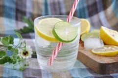 Ice lemonade with fresh lemon Royalty Free Stock Photography
