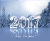 2017 ice lettering. Transparent ice date 2017 against the background of a winter landscape are reflected in the surface of the ice. Christmas and New Year Stock Images