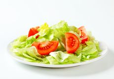 Ice lettuce and tomato wedges Stock Image