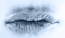 Ice lips Stock Images