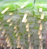 Ice lollies. Green and pink ice lollies Stock Image