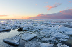 Ice melting on the beach in the sunset Stock Photography