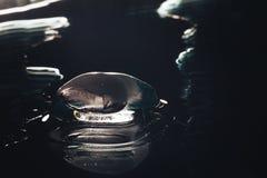 Ice Melting Closeup Royalty Free Stock Photo