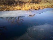 Ice melting on a pond. Stock Photos