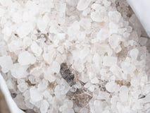 Ice melting salt Royalty Free Stock Photography