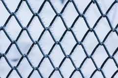 Ice on mesh fence Royalty Free Stock Photography