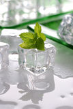Ice and mint Royalty Free Stock Image