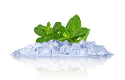 Ice with mint Stock Photography