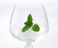Ice and mint ready for drink. Empty glass ready to fill Stock Photos