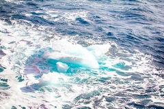 Ice at the North pole and near in 2016 Royalty Free Stock Photography