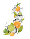 Ice oranges and limes on white background Stock Photos