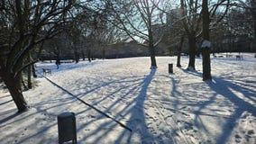 Snow London park. Ice on park stock image