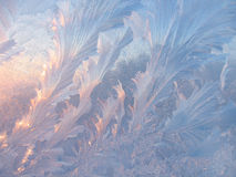 Ice pattern on glass Royalty Free Stock Photo