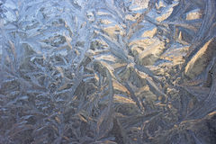 Ice pattern on a window Stock Images