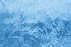 Ice pattern on winter glass Stock Images