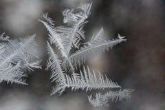 Ice patterns Royalty Free Stock Photo