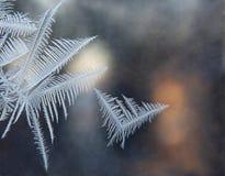 Ice patterns