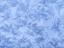 Ice patterns on window glass Royalty Free Stock Photo