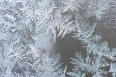Ice patterns on winter glass Stock Images