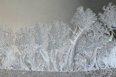 Ice patterns on a winter window Stock Photos