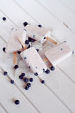 Ice popsicles with yogurt and blueberries in ice lolly mold Royalty Free Stock Images