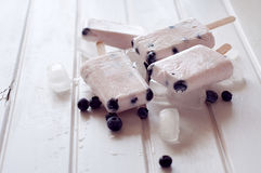 Ice popsicles with yogurt and blueberries in ice lolly mold Stock Photos