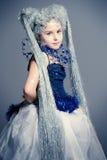 Ice princess Stock Image