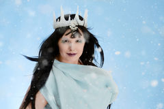Ice queen with blue dress Stock Photography