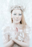 Ice Queen Stock Photos