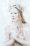 Ice Queen Royalty Free Stock Photos