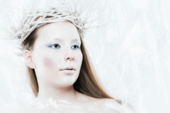 Ice Queen Stock Photography