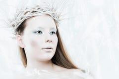 Ice Queen Stock Photography