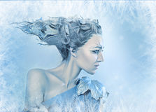 Ice-queen Royalty Free Stock Photos