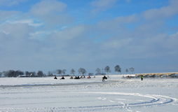 Ice racing, Lithuania Royalty Free Stock Images