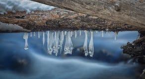 Ice Rain Drops Royalty Free Stock Image
