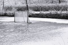 Ice ring and  hockey goal. Natural frozen pond and the hockey goal Stock Images