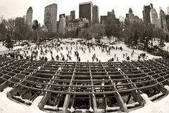 Ice Rink in Central Park Royalty Free Stock Image