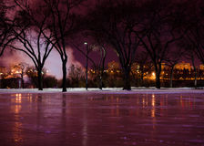 Ice Rink at Night Stock Image