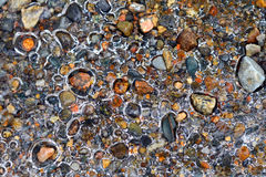 Ice and river pebbles. Ice forms around pebbles on the edge of a river Stock Photo