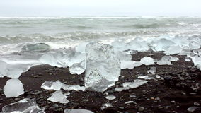 Ice rocks on a black sand beach in Iceland stock video footage