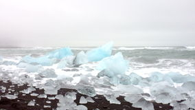 Ice rocks on a black sand beach in Iceland stock video