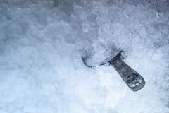 Ice Scoop stainless older. royalty free stock photo