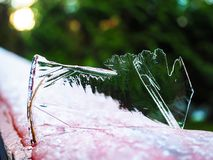 Ice sculpture. A close up of an abstract ice sculpture Royalty Free Stock Images