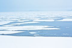 Ice on the sea Stock Photography