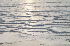 Ice on the sea Royalty Free Stock Photos