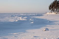 Ice sea. Coast of frozen sea; Finnish Bay of Baltic Sea, Russia Royalty Free Stock Images