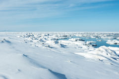 Ice on sea Royalty Free Stock Image
