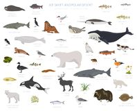 Free Ice Sheet And Polar Desert Biome. Terrestrial Ecosystem World Map. Arctic Animals, Birds, Fish And Plants Infographic Design Stock Image - 137929061