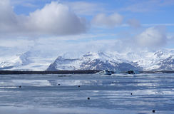 Ice sheet on the water with snow mountain background. In Iceland Royalty Free Stock Photography
